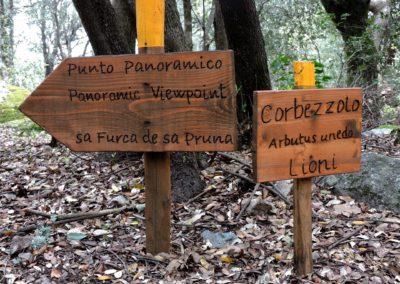 escursioni archeo-naturalistiche10