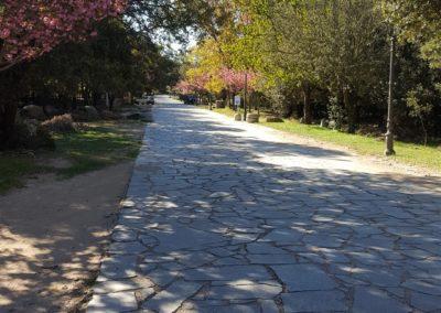 escursioni archeo-naturalistiche3