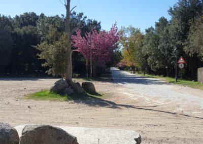escursioni archeo-naturalistiche5