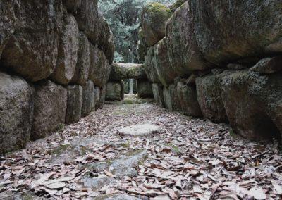 escursioni archeo-naturalistiche9