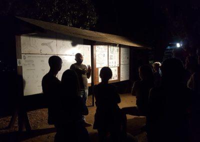visite guidate al Parco in notturna2