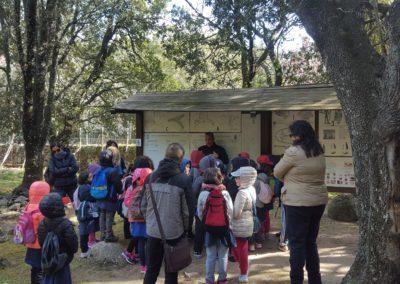 visite guidate per famiglie e gruppi1
